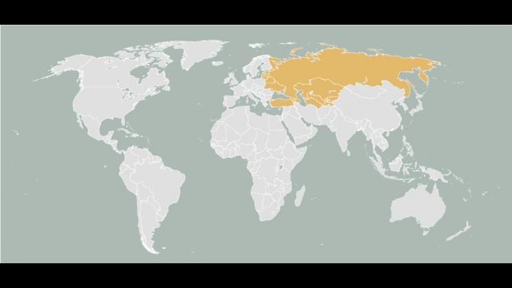 Map of Russia and Eurasia