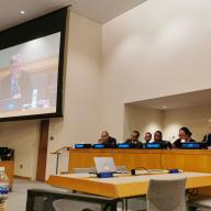 SIPRI informs at the UN High-Level Political Forum