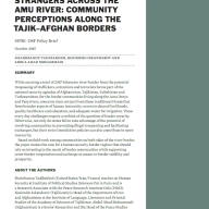Strangers Across the Amu River Policy Brief