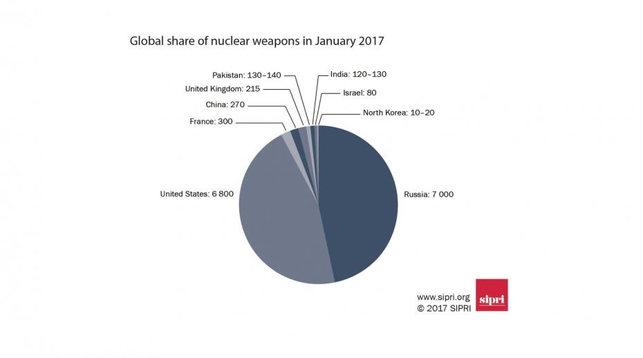 Pie chart showing global share of nuclear weapons in January 2017