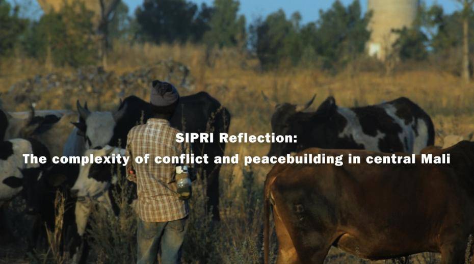 Addressing a key challenge in central Mali: The need for local knowledge—new SIPRI film