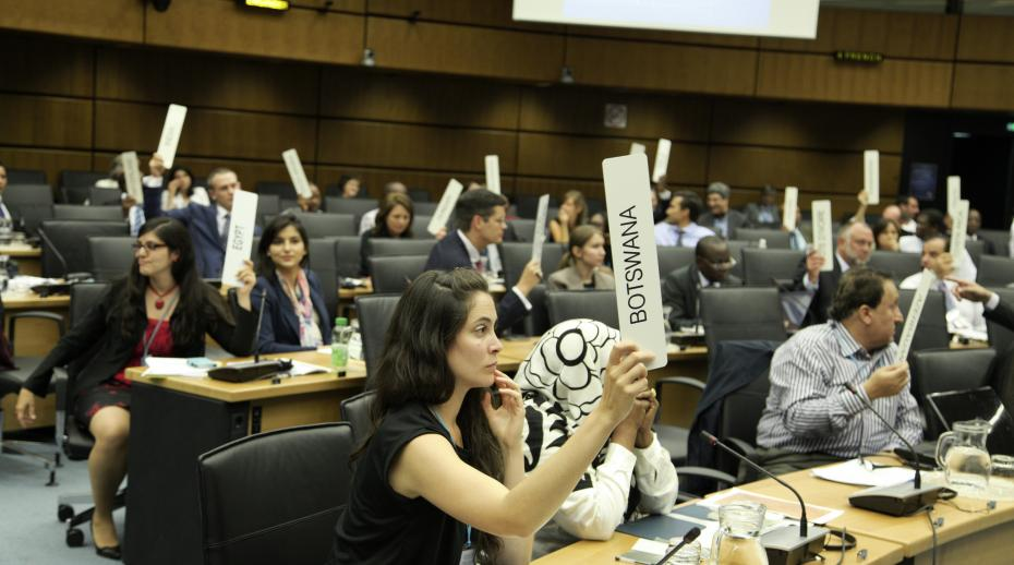 Participants 'vote' during a Diplomacy & Public Policy course run by the CTBTO