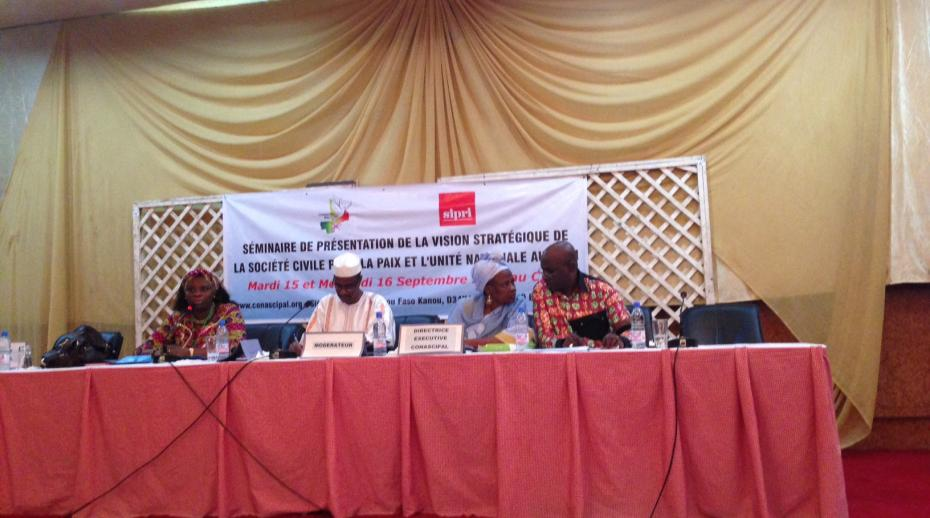 Seminar to support a new strategic vision for peace in Mali