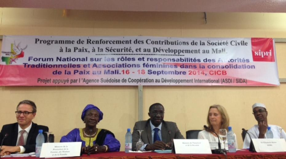 The opening session of the National Forum in Bamako, Mali in 2014
