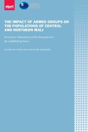 The impact of armed groups on the populations of central and northern Mali